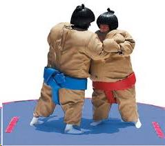 Where to find INFLATABLE SUMO SUITS in Kalamazoo
